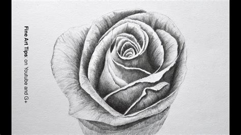 Drawing Flowers: How to Draw a Rose With Pencil Fine Art
