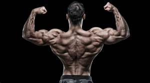 Muscle Building Routine  Back Workout For Strength  U0026 Size