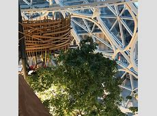 High in the trees inside Amazon's Spheres, a unique