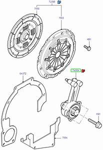 Ford Focus Clutch Release Assemblies     B5  Ib5 1998