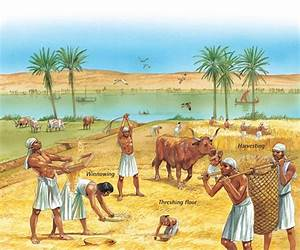 History of land and agriculture in Africa: Part Two ...