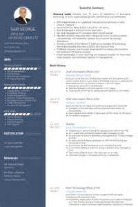 chief curriculum vitae chief information officer resume sles visualcv resume sles database