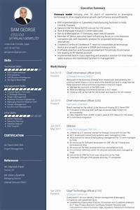 chief information officer resume samples visualcv resume With cio resume template