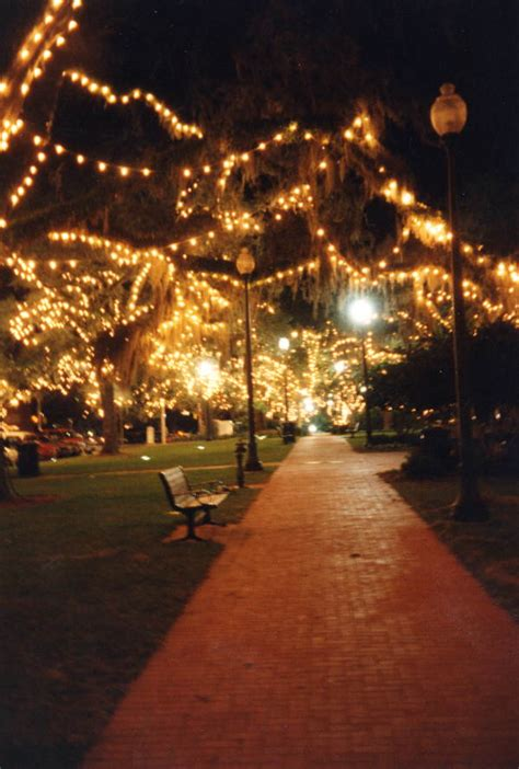 festival of lights florida florida memory trees in ponce de leon park decorated