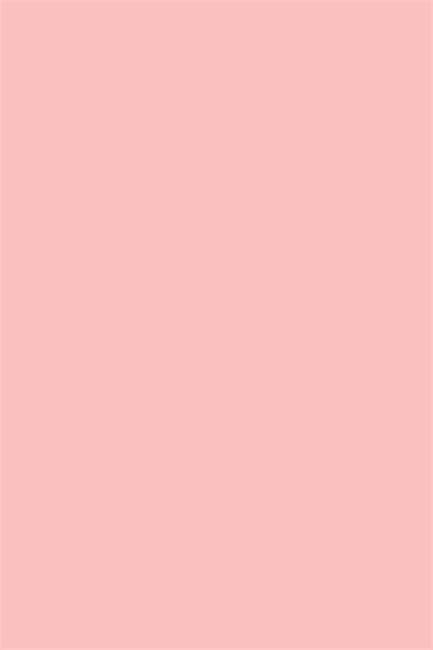 pink peach paint color nancy s blushes the paint store online