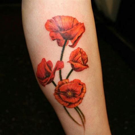 Red Poppy Watercolor Tattoo  Wwwpixsharkcom Images