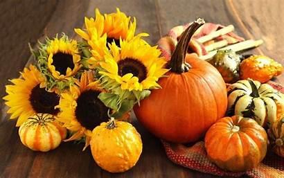 Pumpkin Fall Wallpapers Autumn Widescreen