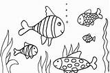 Coloring Fish Pages Printable Puffer Goldfish Getcolorings Terrific Easy Copy Getdrawings Colorings sketch template