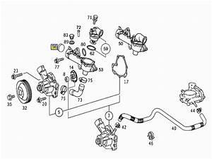 C230 Engine Diagram  C230  Free Engine Image For User