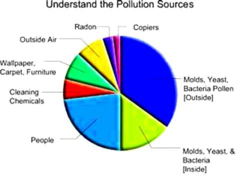 Essay on delhi pollution