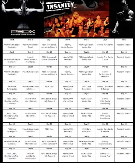 p90x insanity hybrid free downloadable workout sheets