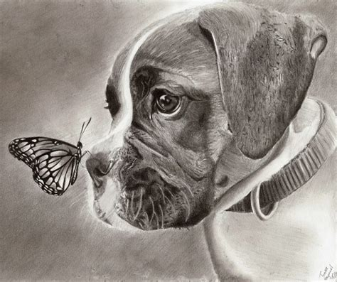 lovely dog drawings  inspiration hative