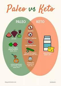The Paleo Diet Vs  Keto Diet  3 Lessons Learned