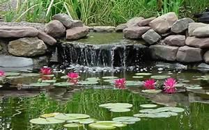 Teich Mit Wasserfall : teich bepflanzen 65 super ideen ~ Markanthonyermac.com Haus und Dekorationen