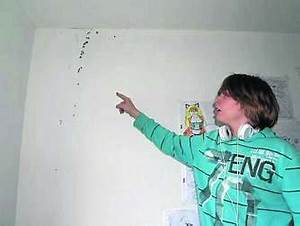 Schimmel Im Kinderzimmer : schimmel an den w nden und defekte waschbecken landkreis ~ A.2002-acura-tl-radio.info Haus und Dekorationen