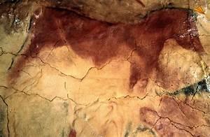 Caballo Pintura rupestre Cueva de Altamira, Cantabria Fotos de viajes