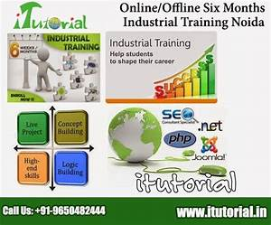Itutorial  Offline Six Months  Industrial  Training In  Seo  Dot Net   Html