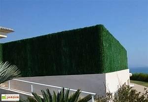 Haie Naturelle Brise Vue : haie artificielle mon am nagement jardin ~ Premium-room.com Idées de Décoration