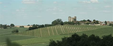 baise aux bureaux visiter le vignoble de l 39 armagnac oenotourisme