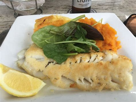 broiled scrod broiled scrod picture of 42 degrees north restaurant manomet tripadvisor