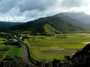 Hanalei River Valley