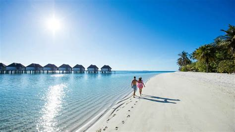 hotels ile maurice  maldives hotels sun resorts