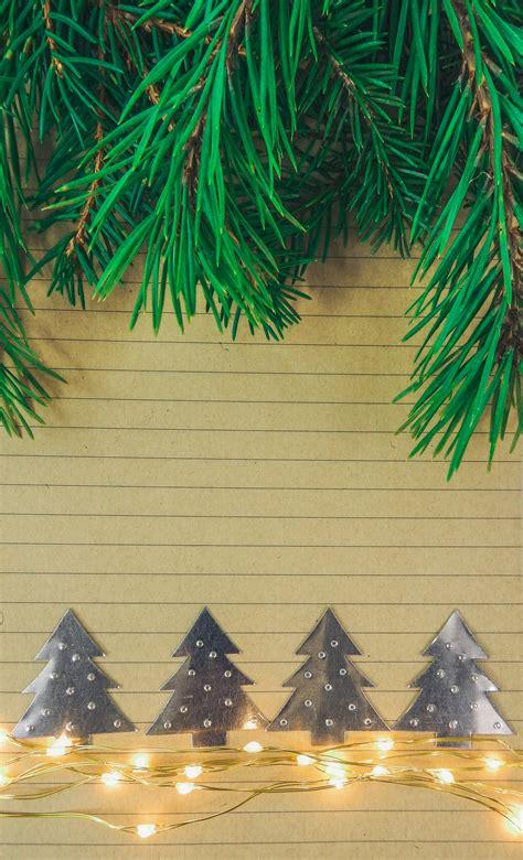 images branch evergreen fir decor christmas