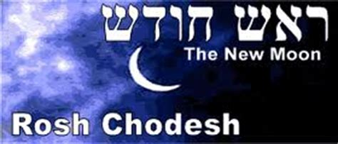 oztorah torah reading pinchas