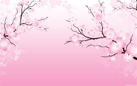 Anime Cherry Blossom Wallpaper - cherry blossom wallpapers wallpaper cave