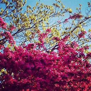 Schöne Instagram Bilder : farbenfroh auch auf instagram ~ Buech-reservation.com Haus und Dekorationen