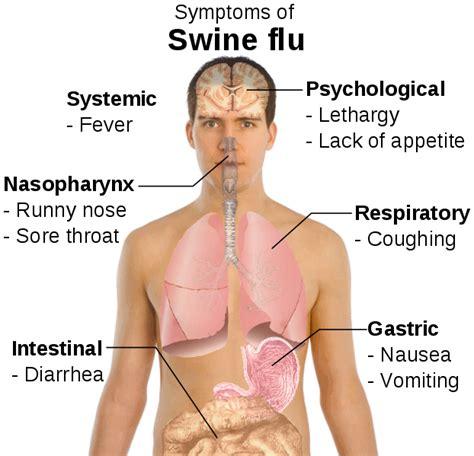 waspadai penyakit flu desport