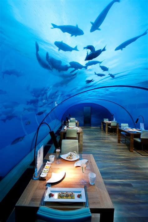 europes  underwater restaurant   dot norway