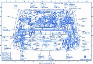 Ford Explorer Eddie Bauer Addition 1997 Electrical Circuit
