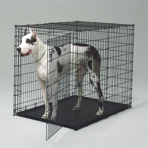 large wire crate for sale designer crates things you about the crates