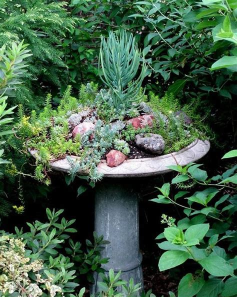 Garden Beautiful Succulents by 37 Most Beautiful Succulent Container Garden Diys With