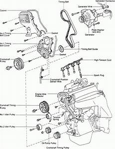 2004 Toyota Corolla Engine Diagram