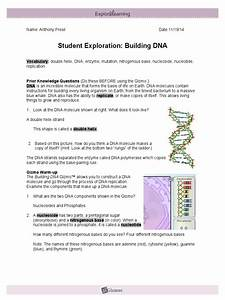 Get  Student Exploration Building Dna
