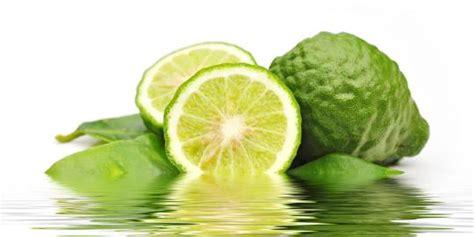 khasiat cantik dan sehat dari jeruk purut merdeka com