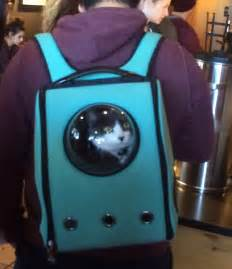 cat backpack carrier clever cat pack lets your pet travel like an astronaut