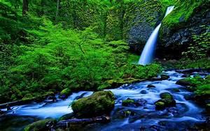 amazon rainforest waterfall - Download Hd amazon ...