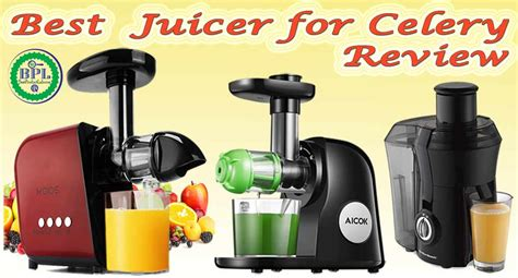 juicer celery contents