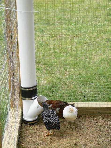 diy chicken feeder how to build an inexpensive chicken feeder from pvc the