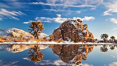 Joshua Parque Nacional Tree Terra Semestre Deixaram