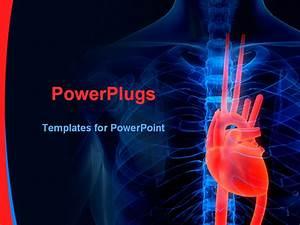 Powerpoint Template  Blue Human Anatomy X