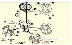 Diagrama De Puesta A Punto Wolkvagen Polo 1 4 A U00f1o 2001