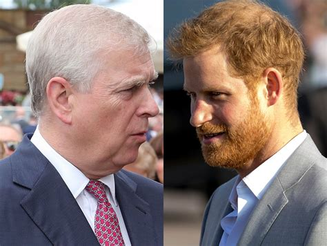 Prince Harry And Prince Andrew Working To Bring Down The ...