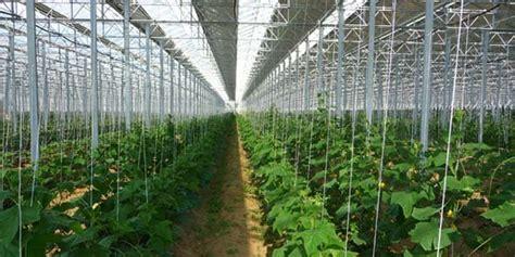 chambre d agriculture 32 serres solaires la chambre d 39 agriculture des p o