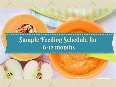 A sample feeding schedule for your baby (6-12 months