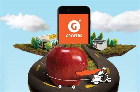 Grofers Launches Stores Across Delhi Ncr; To Cash In On