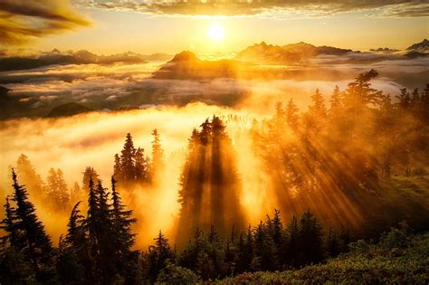 landscape sun rays forest mountain clouds wallpapers